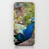 iPhone & iPod Case featuring You Looking at Me? by Dana E