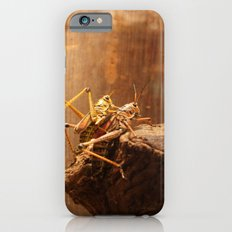 Insects Mate iPhone 6 Slim Case