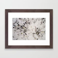 Growing (close-up) Framed Art Print