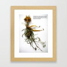 stray sod Framed Art Print