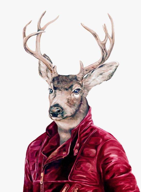 Deer In Leather Art Print