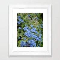Blue Framed Art Print