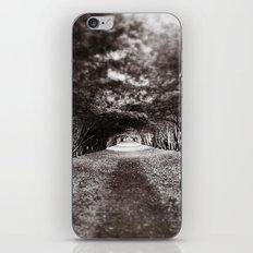 Altar iPhone & iPod Skin