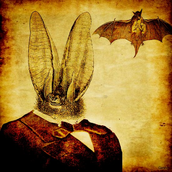 Bat-Man Art Print