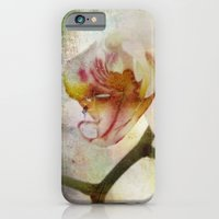 iPhone & iPod Case featuring White Phalaenopsis Orchid by Elizabeth Wilson Photography