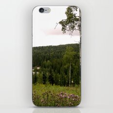 Spring in WaterValley iPhone & iPod Skin