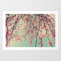 Pink Spring Flower Blossom Cascade Dreamy Whimsical Abstract Botanical Floral  Art Print