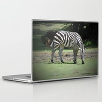 zebra Laptop & iPad Skins featuring Zebra by BeachStudio