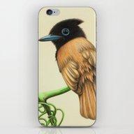 Blue Beak Tweet iPhone & iPod Skin