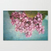 sweet lilacs Canvas Print