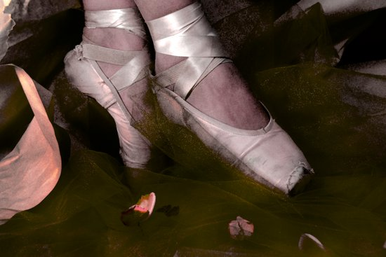 Muddy Ballet Art Print