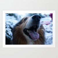 Puppy in fresh Snow Art Print