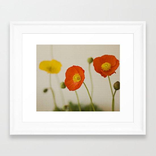 Orange Poppy Bloom Red Green Yellow Flower Framed Art Print