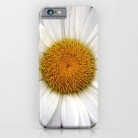 iPhone & iPod Case featuring Daisy Pom by Kama Storie