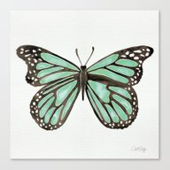 Mint Butterfly Canvas Print