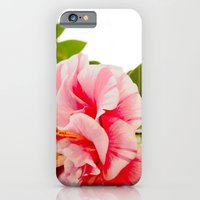 Winter Brights iPhone 6 Slim Case