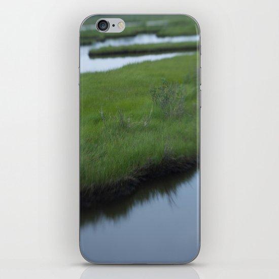 Cattus Island iPhone & iPod Skin