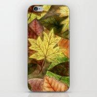 Autumn Leaves iPhone & iPod Skin