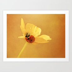 Buttercup Lady Art Print