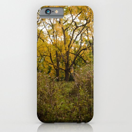 Walk Through Fall iPhone & iPod Case