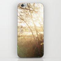 a little birdhouse iPhone & iPod Skin