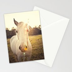 Sunlit Horse Stationery Cards