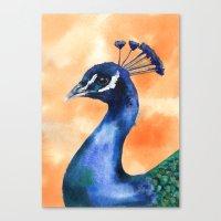 Peacock print, bird art, exotic birds, animal paintings, peacock painting Canvas Print
