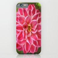 Dahlia iPhone 6 Slim Case