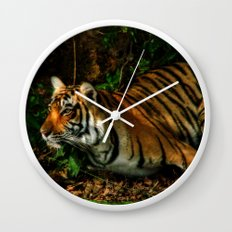 Bengal Beauty Wall Clock