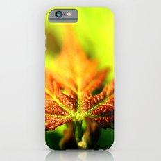 Red Leaf Lines iPhone 6 Slim Case