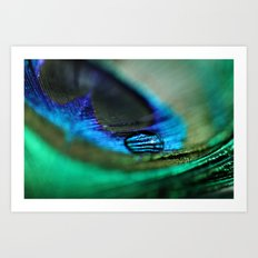 Water Drop on a Feather Art Print