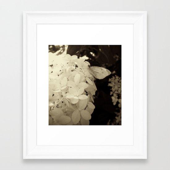 Petal Wings Framed Art Print