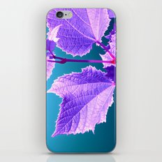 purple wine leaf iPhone & iPod Skin