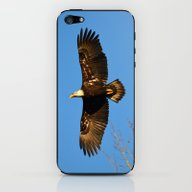 Bald Eagle Soaring Over iPhone & iPod Skin