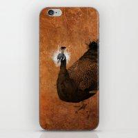 Cosmophores iPhone & iPod Skin