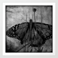 Wings in the Garden Art Print