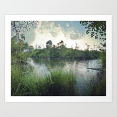 Aquitaine Art Print