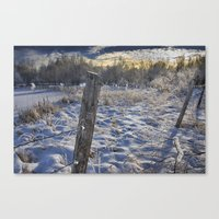 Morning Frost in Alberta Canvas Print