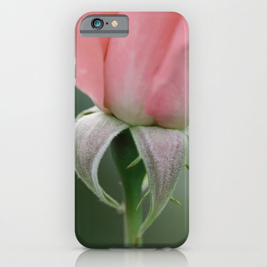 Rose at Twilight iPhone & iPod Case