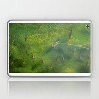 Bluegill Laptop & iPad Skin
