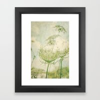 Sanctuary -- White Queen Anne's Lace Meadow Wild Flower Botanical Framed Art Print