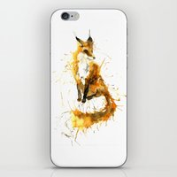 Bushy Tailed iPhone & iPod Skin