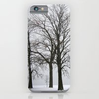 Three Trees In Winter iPhone 6 Slim Case