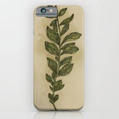 Oregano iPhone 6 Slim Case