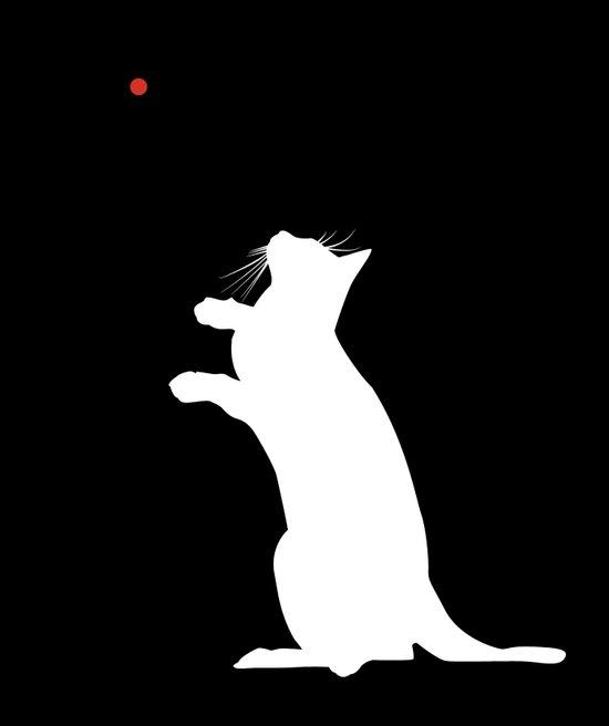 Laser Kitty Art Print