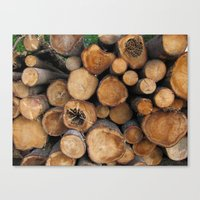 New Sawn Logs Canvas Print