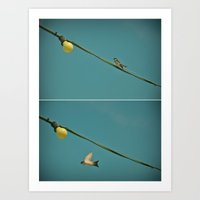 Chasing Swallows II Art Print