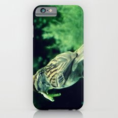 A Delicate Morsel iPhone 6s Slim Case