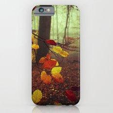 Leaves in Autumn iPhone 6s Slim Case