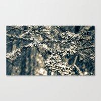 Covered Branches Canvas Print